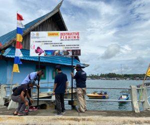 Pulau Derawan dan Maratua